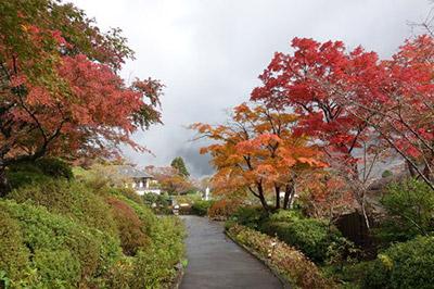 箱根強羅公園の紅葉